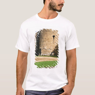 Ireland, Roscommon. View of Roscommon Castle. T-Shirt