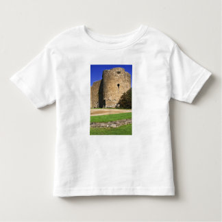 Ireland, Roscommon. View of Roscommon Castle. Toddler T-shirt