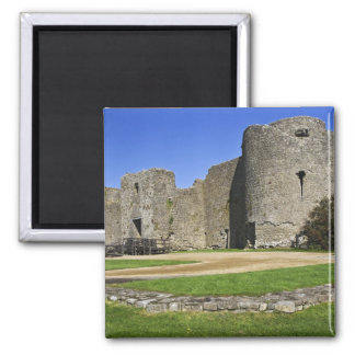 Ireland, Roscommon. View of ruins of Roscommon 2 Inch Square Magnet