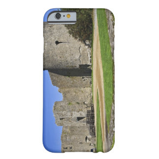 Ireland, Roscommon. View of ruins of Roscommon Barely There iPhone 6 Case