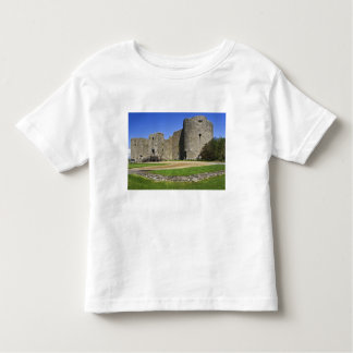 Ireland, Roscommon. View of ruins of Roscommon Toddler T-shirt