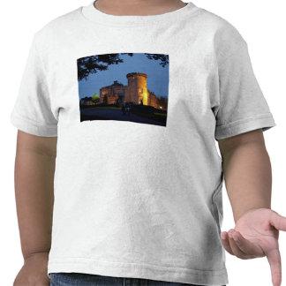 Ireland, the Dromoland Castle lit at dusk, Shirts
