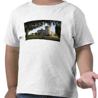 Ireland, the Dromoland Castle side entrance. Tee Shirts