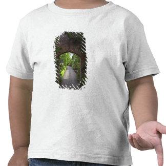 Ireland the Dromoland Castle very green T Shirt