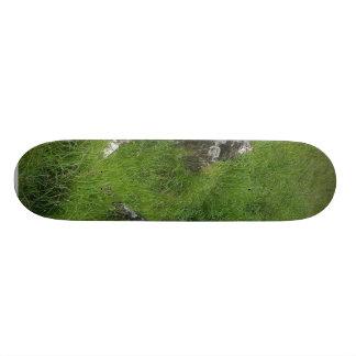 Ireland Tombs Stones Skate Board Deck
