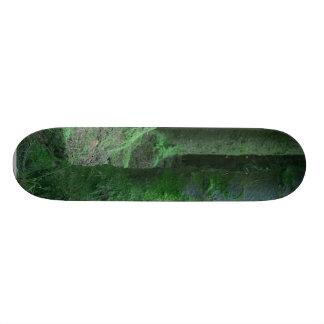 Ireland Tons Of Wild Flowers Ancient Tombs Dark Mo Custom Skate Board