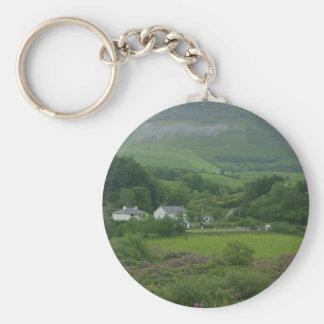 Irelands Green Fild Keychain