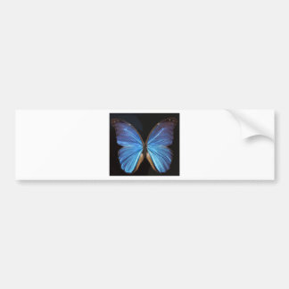 Iridescent Blue Butterfly Wings Bumper Sticker