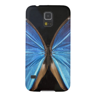 Iridescent Blue Butterfly Wings Case For Galaxy S5