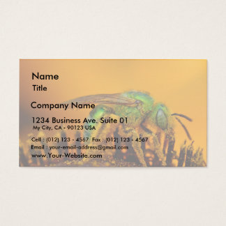Iridescent Green Sweat Bees Business Card