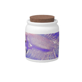 Iridescent Purple Fighting Fish Candy Jars