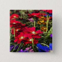 Iridescent Spring Button