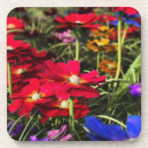 Iridescent Spring Cork Coaster