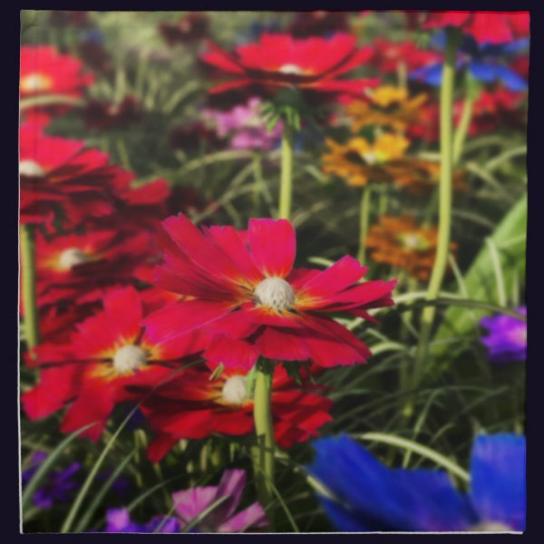 Iridescent Spring Napkins