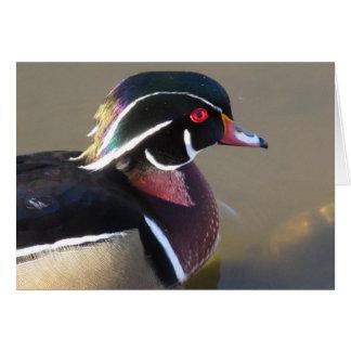 Iridescent Wood Duck Card