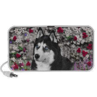Irie el husky siberiano en flores iPod altavoz