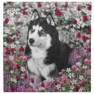 Irie el husky siberiano en flores servilletas imprimidas