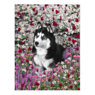Irie el husky siberiano en flores tarjeta postal
