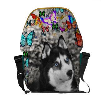 Irie el husky siberiano en mariposas bolsas de mensajeria