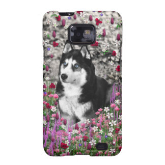 Irie Siberian Husky in Flowers Black White Dog Samsung Galaxy SII Covers