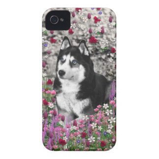 Irie Siberian Husky in Flowers, Black White Dog Case-Mate iPhone 4 Case
