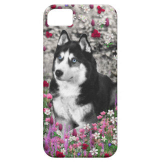 Irie Siberian Husky in Flowers, Black White Dog iPhone 5 Cover
