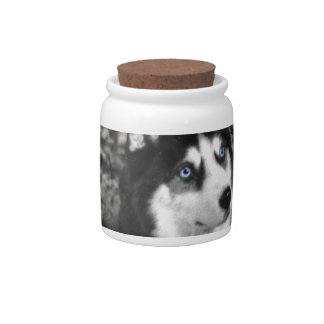Irie the Siberian Husky in Butterflies Candy Dishes