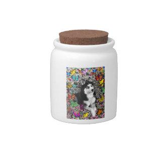 Irie the Siberian Husky in Butterflies Candy Jars