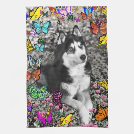 Irie the Siberian Husky in Butterflies Kitchen Towel