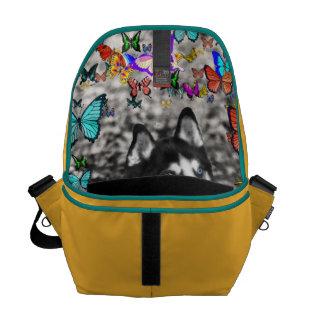 Irie the Siberian Husky in Butterflies Messenger Bags