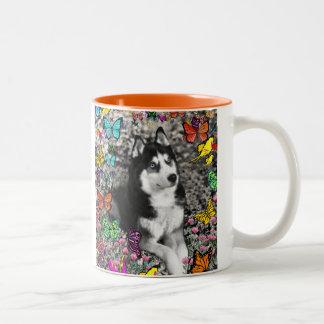 Irie the Siberian Husky in Butterflies Coffee Mugs
