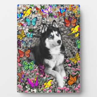 Irie the Siberian Husky in Butterflies Plaque