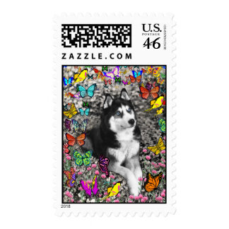 Irie the Siberian Husky in Butterflies Postage Stamps