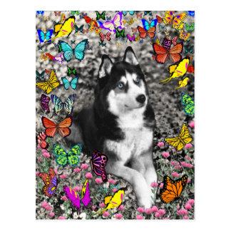 Irie the Siberian Husky in Butterflies Postcard