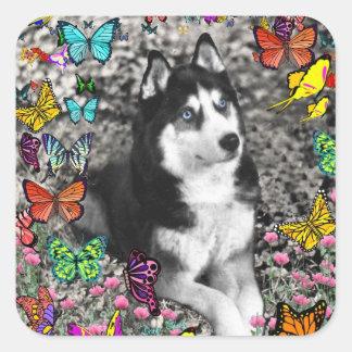 Irie the Siberian Husky in Butterflies Square Sticker