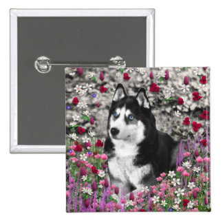 Irie the Siberian Husky in Flowers 2 Inch Square Button