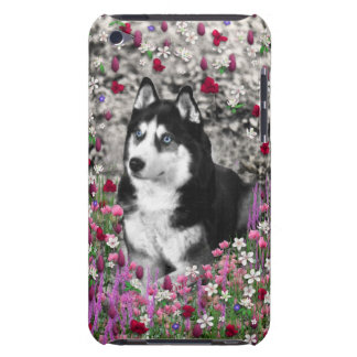 Irie the Siberian Husky in Flowers Barely There iPod Case