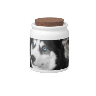 Irie the Siberian Husky in Flowers Candy Jar