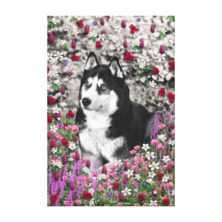 Irie the Siberian Husky in Flowers Canvas Print