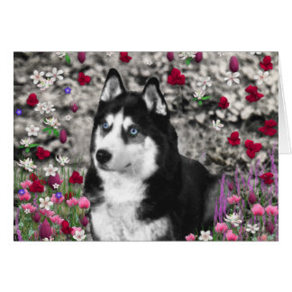 Irie the Siberian Husky in Flowers Greeting Cards