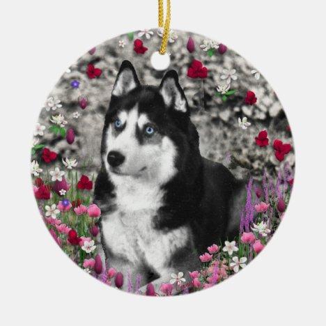 Irie the Siberian Husky in Flowers Ceramic Ornament