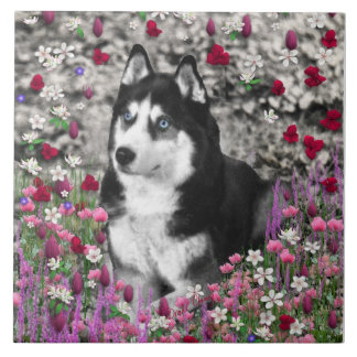 Irie the Siberian Husky in Flowers Large Square Tile