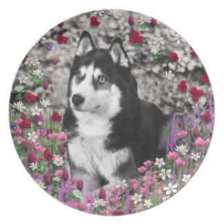 Irie the Siberian Husky in Flowers Party Plates