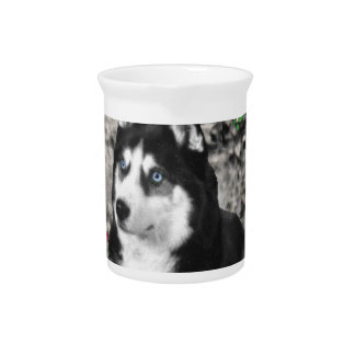 Irie the Siberian Husky in Flowers Pitchers