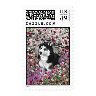 Irie the Siberian Husky in Flowers Postage Stamp
