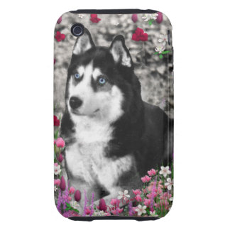 Irie the Siberian Husky in Flowers Tough iPhone 3 Covers