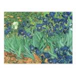 Iris, 1889 tarjetas postales