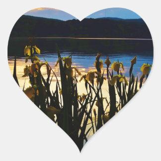 Iris amarillo en la orilla de la punta de flecha pegatina en forma de corazón