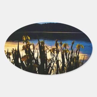 Iris amarillo en la orilla de la punta de flecha pegatina ovalada
