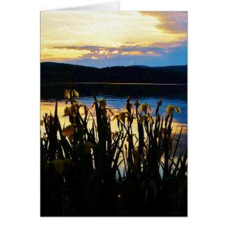 Iris amarillo en la orilla de la punta de flecha tarjeta de felicitación